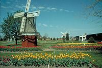 Photo of Vé Máy  bay giá rẻ đi Hà Lan