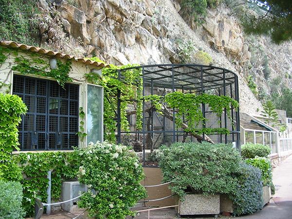Jardin Animilier de Monaco