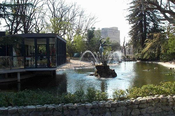vuon Avignon