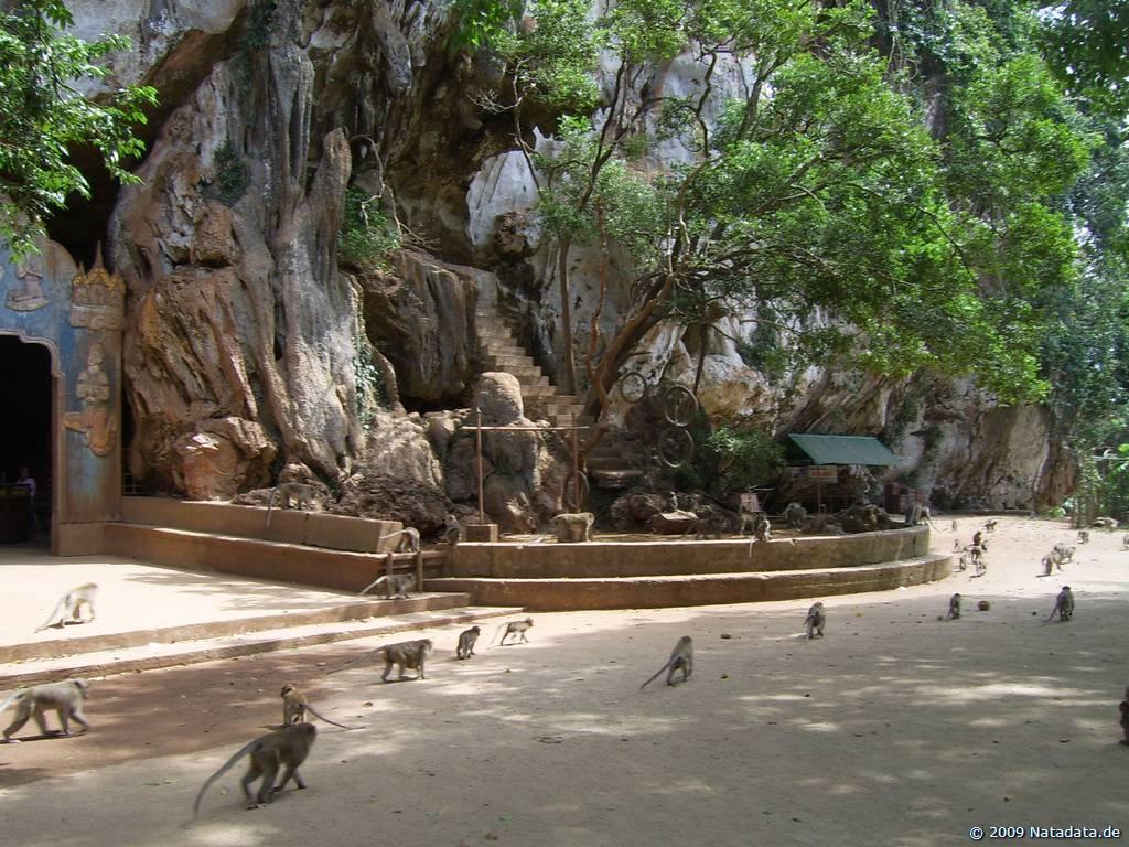 Wat Suwan Kuha 3