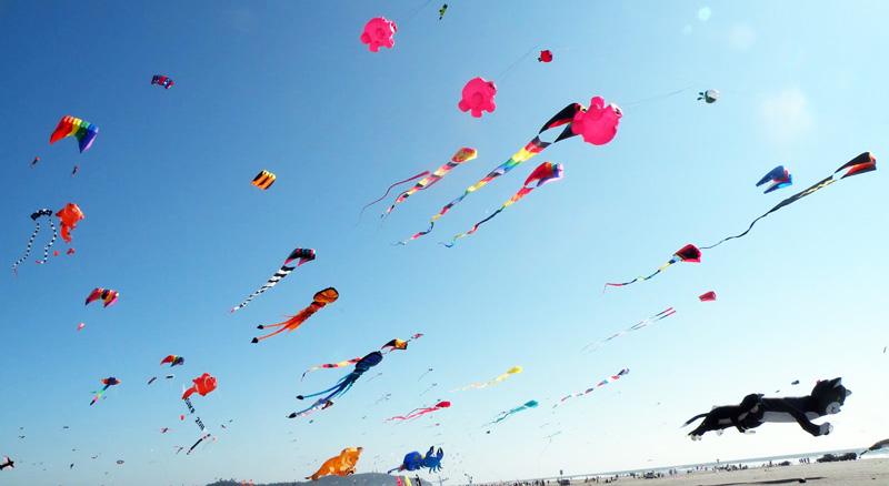 le hoi Kite Festival 1