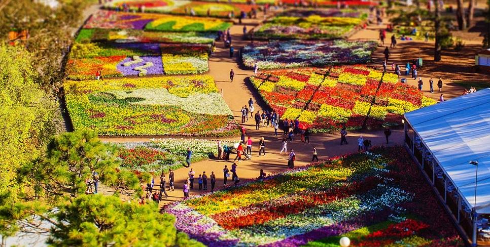 le hoi hoa Floriade 4