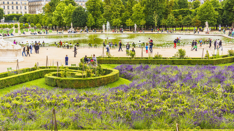 Tuileries Garden 5
