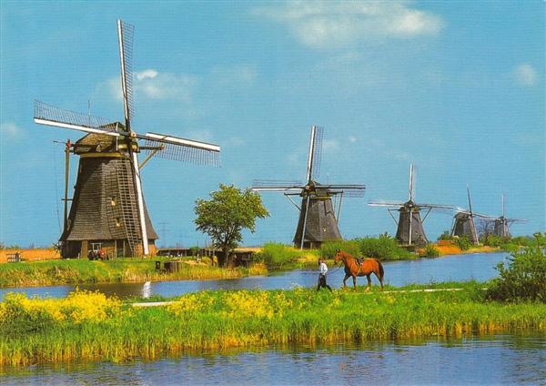 lang coi xay gio Kinderdijk 1